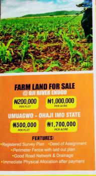 Affordable Farmland, Diamond Estate Oji River, Oji River, Enugu, Commercial Land for Sale