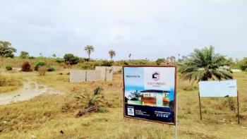 Affordable Plots of Land Facing The Express, Lepia Town, By La Campagne Tropicana Beach Resort, Lapekun, Ibeju Lekki, Lagos, Residential Land for Sale