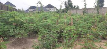 Irresistible and Well Located Plot of Residential Land, Conerstone Road, Uzuoba, Port Harcourt, Rivers, Residential Land for Sale