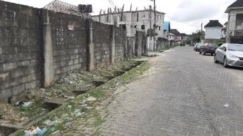 Well Shaped, Fenced and Gated Two (2) Plots of Land, Off Idiagbon Road, New Gra Phase 3, Gra Phase 3, Port Harcourt, Rivers, Residential Land for Sale