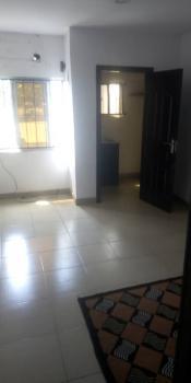 Luxury Mini Flat., Alaka Estate, Alaka, Surulere, Lagos, Mini Flat for Rent