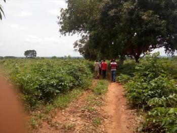 Landed Property, Ugoneki Community Along Benin Agbor Express Way  Benin City, Ikpoba Okha, Edo, Mixed-use Land for Sale
