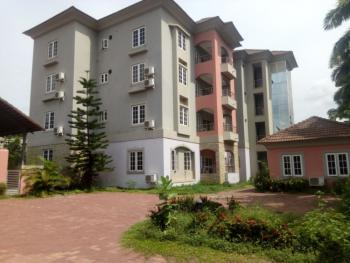 Serviced 3 Bedroom Flat with 1 Room Bq., Off Ibb Way, Maitama District, Abuja, Flat for Rent