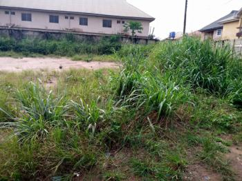 1 and Half Plot of Land, Umuokoto By Nekede Polytechnic Junction, Owerri West, Imo, Mixed-use Land for Sale