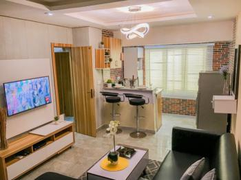 Micheals Fancy One Bedroom Apartment, New Horizon 2 Estate, Ikate, Lekki, Lagos, Flat / Apartment Short Let