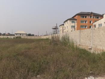 Land Measuring 1014m2 Sqm Located in a Serene Environment, Festac Amuwo Link Road, Festac, Amuwo Odofin, Lagos, Mixed-use Land for Sale