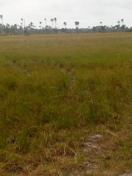 Registered Survey and Deed of Assignment, Okun Imedu, Ibeju Lekki, Lagos, Mixed-use Land for Sale