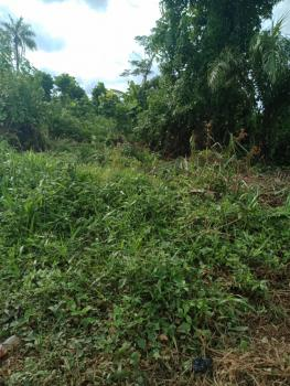1 Acre - 200 Acres Land, Along Ring Road Osogbo, Aladota / Okinni, Egbedore, Osun, Residential Land for Sale