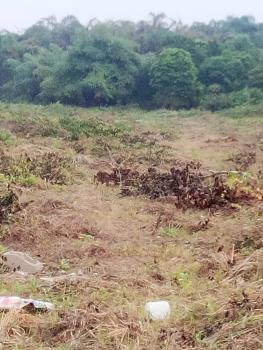 103 Acres of Farmland, Epe, Lagos, Commercial Land for Sale