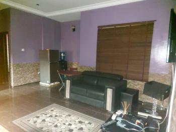 Luxury Furnished Mini Flat, Oniru Estate, Oniru, Victoria Island (vi), Lagos, Mini Flat for Rent