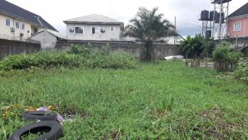 Well Located Two (2) Plots of Residential Land, Louis Drive, Off Sani Abacha Link Road, Gra Phase 3, Port Harcourt, Rivers, Residential Land for Sale