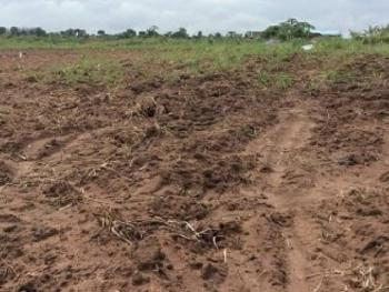 Cheap and Geniue Land, Epe, Lagos, Mixed-use Land for Sale