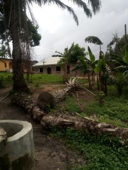 Full Plot of Land, Off Ikola Road, Command, Ipaja, Lagos, Mixed-use Land for Sale