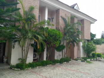 Luxury Finished 4 Bedroom Terrace Duplex with a Room, Asokoro District, Abuja, Terraced Duplex for Rent
