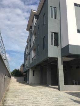 Newly Built 2 Bedroom Apartment on a Penthouse with Double Balcony, Ologolo, Osapa, Lekki, Lagos, Flat for Rent