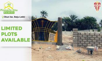 an Amazing Topnotch 100% Dry Land with Government Approved Excision, Located in a Village That Is 2 Mins Drive After La Campaigne, Okun-ise, Ibeju Lekki, Lagos, Mixed-use Land for Sale