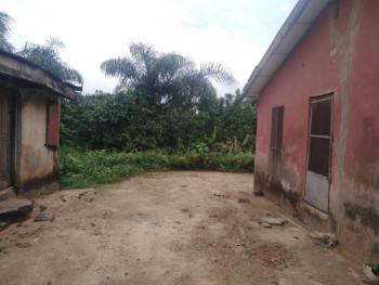 Full Plot of Land with Completed 2 Bedroom Flat., Ojokoro Newtown Estate., Agric, Ikorodu, Lagos, Detached Bungalow for Sale