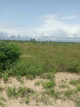 Commercial Land for Sell with a Perfect Title Gazette in Alatishe, Ashron View Estate Phase 1, Alatise, Ibeju Lekki, Lagos, Commercial Land for Sale