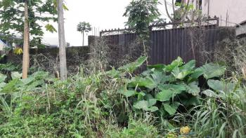 Well Loctated 3 Plots of Dry and Firm Land, Delta Park, Choba, Port Harcourt, Rivers, Residential Land for Sale