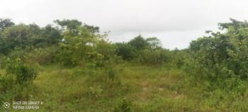 100 Plots Dry Land Measuring 650sqm, Behind Mayfair Garden Estate, Awoyaya, Ibeju Lekki, Lagos, Mixed-use Land for Sale