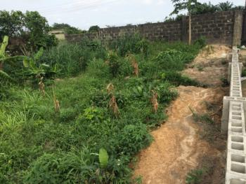60 By 60 Land, Valley View Estate, Ebute, Ikorodu, Lagos, Residential Land for Sale