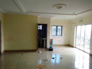 Luxury 3 Bedroom Apartment., Off Ishaga Road., Ojuelegba, Surulere, Lagos, Flat for Rent