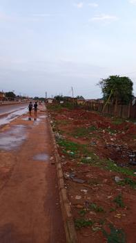 2 Plots of Land Along The Major Road, Good for Gas Station, Ayobo, Lagos, Commercial Land for Sale