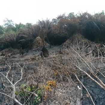 45 Acres of Land, Ladeba, Eleranigbe, Ibeju Lekki, Lagos, Residential Land for Sale