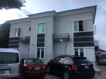 Luxury 3 Bedroom Flat with Excellent Facilities, Not Far From The Pinkberry/domino Pizza, Ologolo, Lekki, Lagos, Flat for Rent