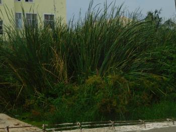 1400sqm, Ologolo, Lekki, Lagos, Mixed-use Land for Sale