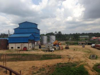 Palm Oil Refinery, Free Trade Zone, Calabar, Cross River, Factory for Sale