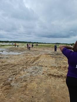 Serviced Plots of Land, Dreamcity Estate, Abraham Adesanya, Ogombo, Ajah, Lagos, Residential Land for Sale