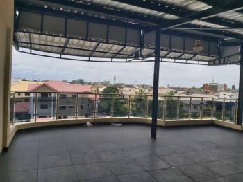 Spacious Penthouse, Lekki Phase 1, Lekki, Lagos, Restaurant / Bar for Rent