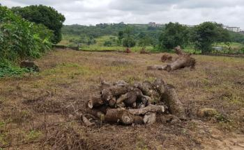 1.3 Hectares School, Public Institution Land, Behind Orozo Technical School, After Winners Church, Orozo, Abuja, Commercial Land for Sale