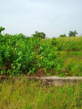 Cheap Land, Caritas Luxury Homes, Okun Iseki Eleko, Okun Imosan, Ibeju Lekki, Lagos, Mixed-use Land for Sale