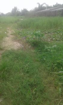 700sqm Land, Lake View Park Estat, Orchid Road, After Chevron Toll Gate, Lekki, Lagos, Residential Land for Sale