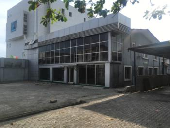 Spacious Fully Detached Property, Off Sanusi, Victoria Island (vi), Lagos, Plaza / Complex / Mall for Rent
