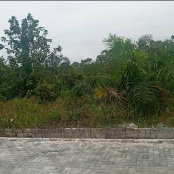 Strategic 5000ms Plot Along Expresway, By Spg Road and  Globe Motors, Agungi, Lekki, Lagos, Commercial Land for Sale