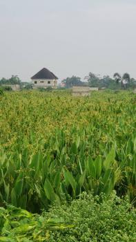 Land, Emperor Pillars Estate in 6th Avenue, Festac, Amuwo Odofin, Lagos, Land for Sale