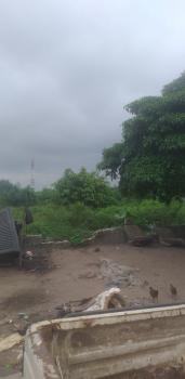 Vast Acres of Farm Land. Title: Free Hold, Farm Land, Epe, Lagos, Commercial Land for Sale