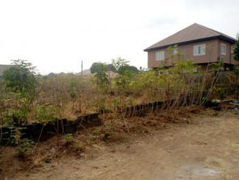 Land, Old Airport Road, Thinkers Corner, Enugu, Enugu, Mixed-use Land for Sale