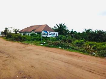 Gazette, Coastal Road, Eleko, Ocean Pearl Extention, Igando Orudu, Ibeju Lekki, Lagos, Mixed-use Land for Sale