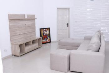 Furnished 3 Bedrooms Apartment, Area 8, Garki, Abuja, Flat for Rent