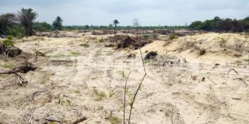 Survey, Dangote Refinery Road, Abule Oniyanrin Village, Itamarun, Ibeju Lekki, Lagos, Residential Land for Sale