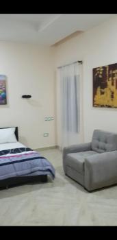 Top Notch One Bedroom, Katampe Extension, Katampe, Abuja, Mini Flat Short Let