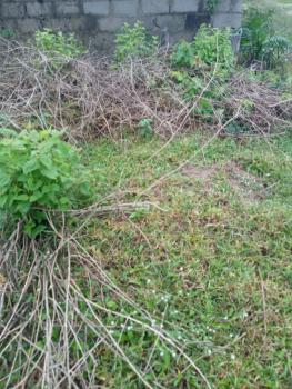Residential Land with Rural Occupancy, Pearl  View Estate, Anyanganse, Akpabuyo, Cross River, Residential Land for Sale