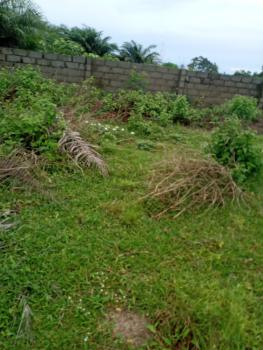 Land with Excision for Commercial, Grace Ville Estate, Okegun Odofin Village, Ikegun, Ibeju Lekki, Lagos, Commercial Land for Sale