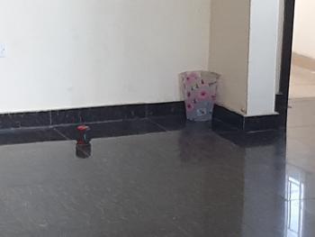 Luxurious Miniflat with Visitors Toilet, Badore, Ajah, Lagos, Mini Flat for Rent