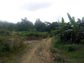 53.4 Acres, Omi-asoro Express Junction, Along Akure - Ibadan Express Way, Ilesa East, Osun, Mixed-use Land for Sale