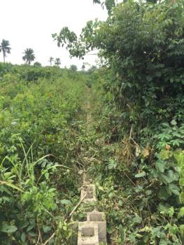 Acres of Dry Agricultural Land, Odogbawojo, Mojoda, Epe, Lagos, Commercial Land for Sale